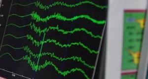 sismografo_xin