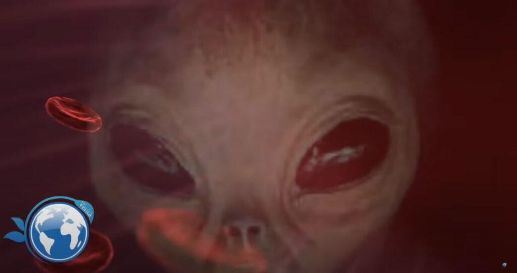 Sei un Rh-? Allora potresti essere di origine Extraterrestre